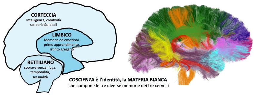 Coscienza_identità