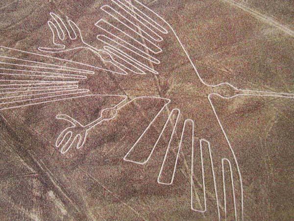 Il Condor, uno dei disegni Nazca, visibili in Perù e riconoscibili solo dall'alto