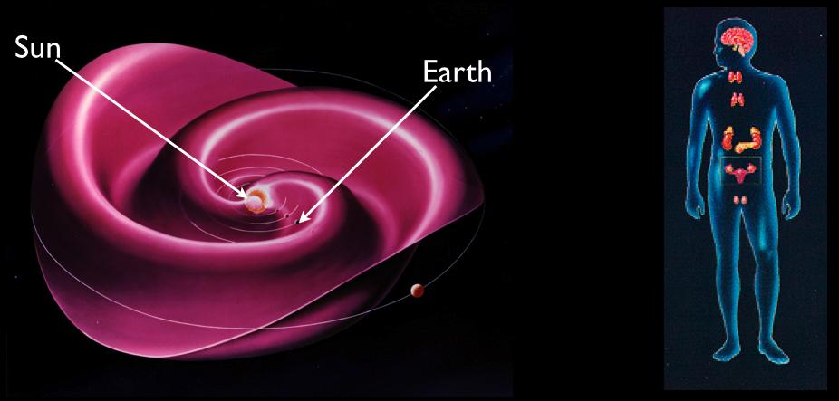 Il sistema endocrino secerne ormoni nell'attimo in cui il vento solare tocca la superficie terrestre